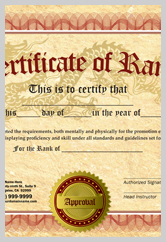 Martial Arts Rank Certificate ma010501